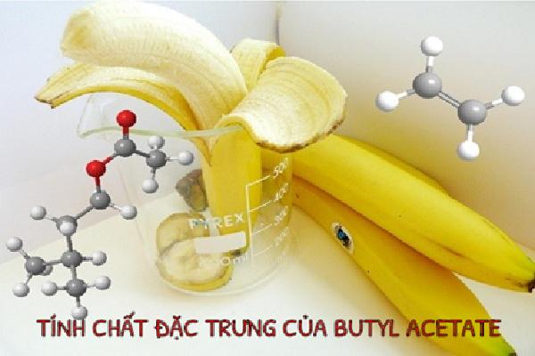 Butyl Acetate có mùi hương đặc trưng của chuối chín