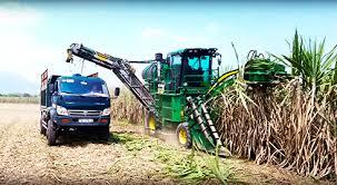 Sản xuất Ethanol từ mía: Nguồn nhiên liệu sạch cho tương lai